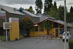 seattle dog resort pet friendly care boarding and grooming in seattle, washington